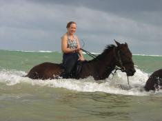 Horseback Riding Jamaica