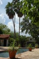 Quinta Mazatlan Adobe Pool
