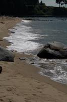 Stanley Park Beach