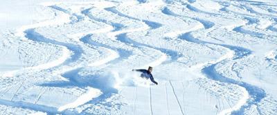 skiingwiki.jpg