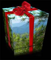 green-gift.jpg