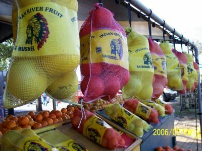 Think Spring!  Citrus stand near Homosassa Springs, Florida (Scarborough photo)