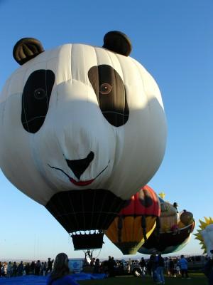 A panda balloon, one of many special shapes balloons at Balloon Fiesta, Albuquerque (Scarborough photo)