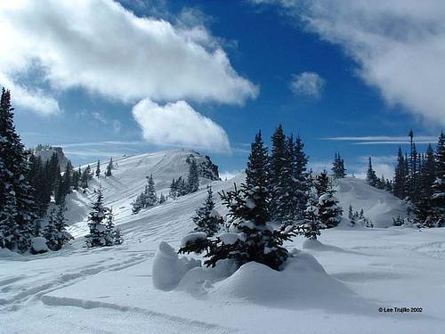 Near Grand Lake, Colorado (courtesy justasungod at flickr's CC)