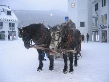 New Hampshire sleigh ride (courtesy Andrea Calabretta)