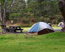 camp_x220.jpg