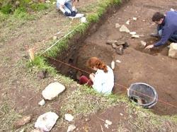 Archaeological dig at Abbeylara, County Longford, Ireland