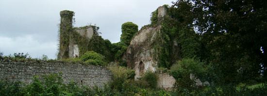 Moydrum Castle, Athlone