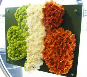 An Irish shamrock flag made out of flowers seen at Dublin Airport