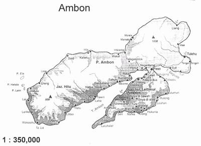 mini-ambon01200.jpg