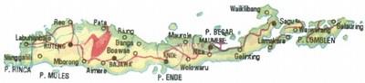 mini-flores_map1gif.jpg