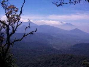 mini-gunung-haliman-np.jpg