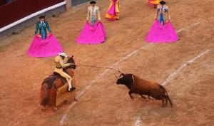 Bullfight in Madrid