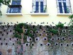 plaza-de-las-palomas-1-4201.jpg