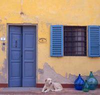 mh_tuscan-villa-guard.jpg