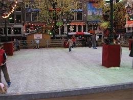Leidseplein Ice skating