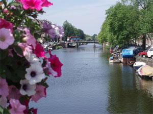 June in Amsterdam