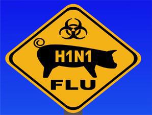 h1n1-2-in