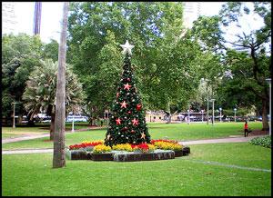 _december-in-sydney