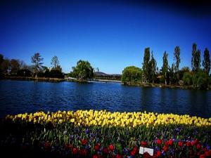 Floriade Festival