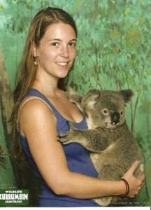 cheeky koala