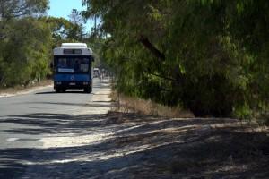 rottnest bus