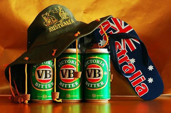 vb beer