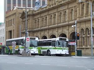 hobart buses
